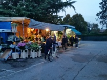This kiosk style flower market is next to the cemetery and in a residential area, which I love.